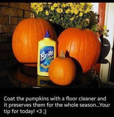 pumpkin-floor-cleaner